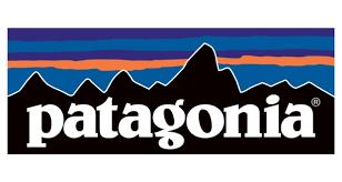 Patagonia logo long
